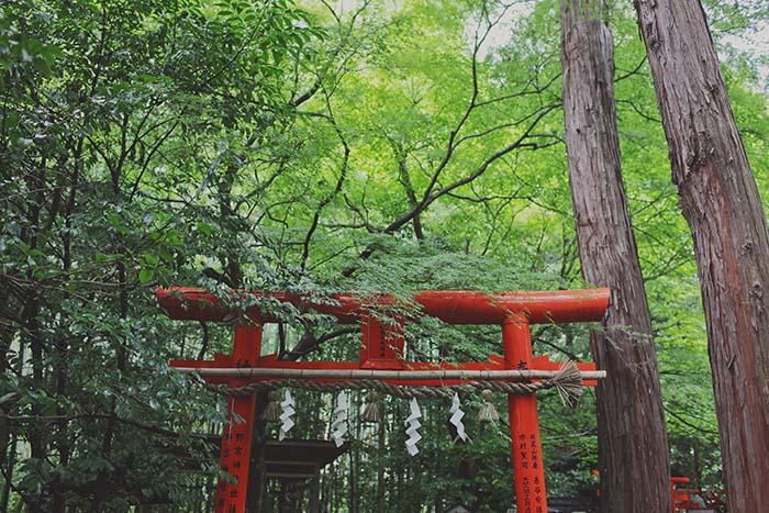 Kyoto-104