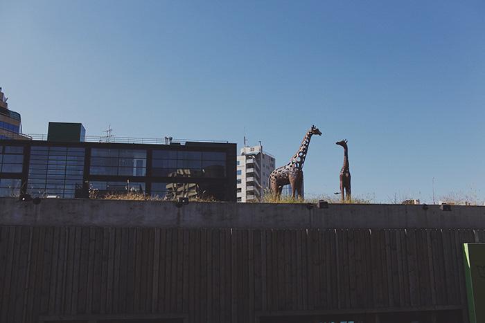 Seoul-429