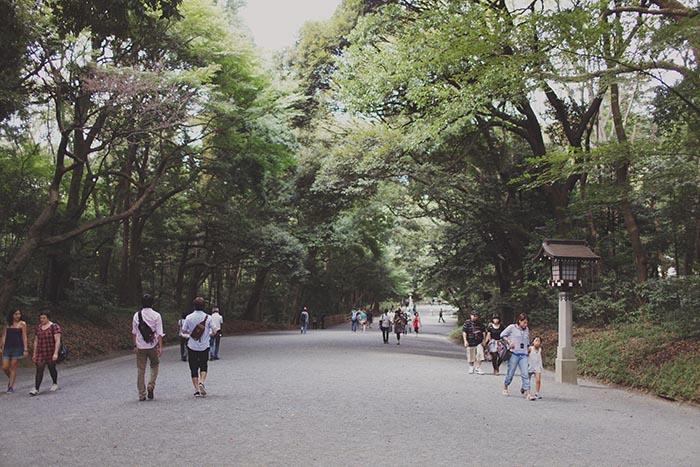 Tokyo-227