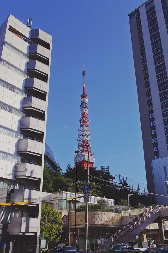 Tokyo-313